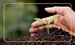 Homenagem SOC ao Dia Mundial do Meio Ambiente 2018 destaque